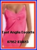 East Anglia Escorts photo